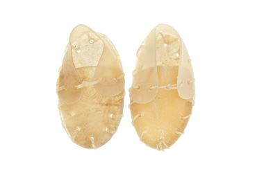 SMALL RAWHIDE SHOES 2PCS 40GR 12CM