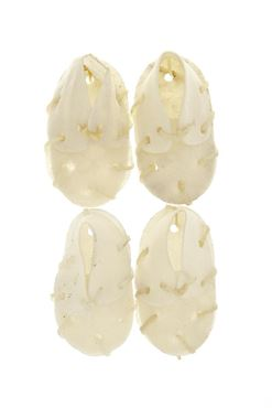 Изображение BLEACHED MINI SHOES 4PCS 32GR 6CM