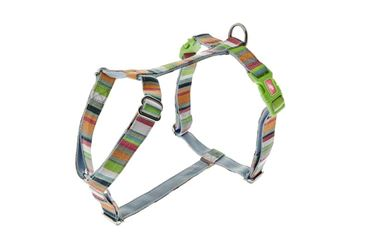 ADJUST.HARNESS COLOR 10MMX30-40CM RAINBO