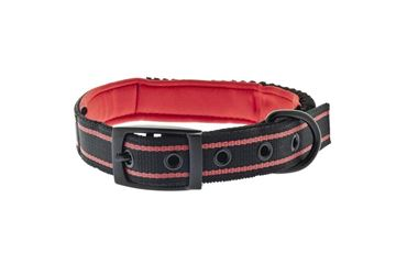 Εικόνα της BUNGEE COLLAR AND LEASH