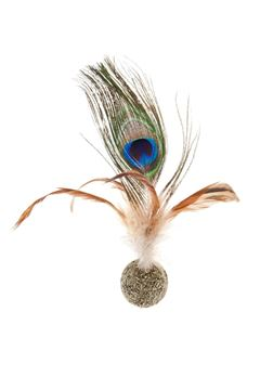 Εικόνα της PEACOCK FEATHERS BALL 6PCS