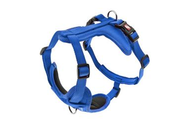 Изображение HARNESS CESARE XS 1,5CM (29-34CM) BLUE