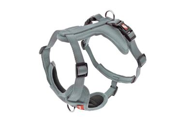 Изображение HARNESS CESARE XS 1,5CM (29-34CM) GREY