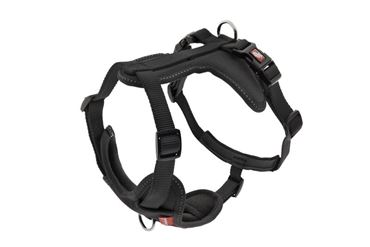Изображение HARNESS CESARE XS 1,5CM (29-34CM) BLACK